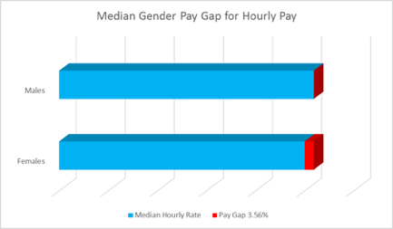 Graph showing the median gender pay gap of 3.56%